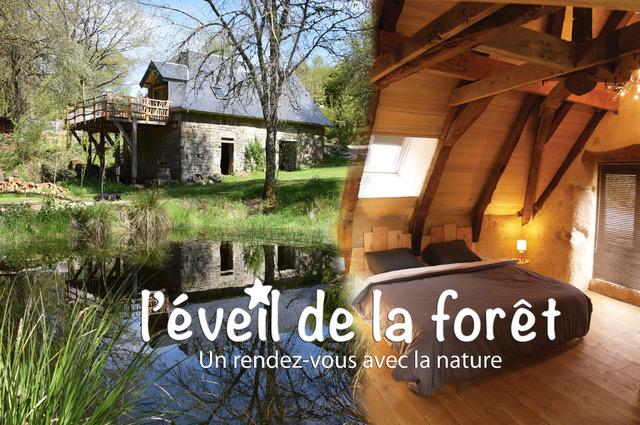 Photo Meublé de Tourisme l'éveil de la forêt- VITRAC SUR MONTANE