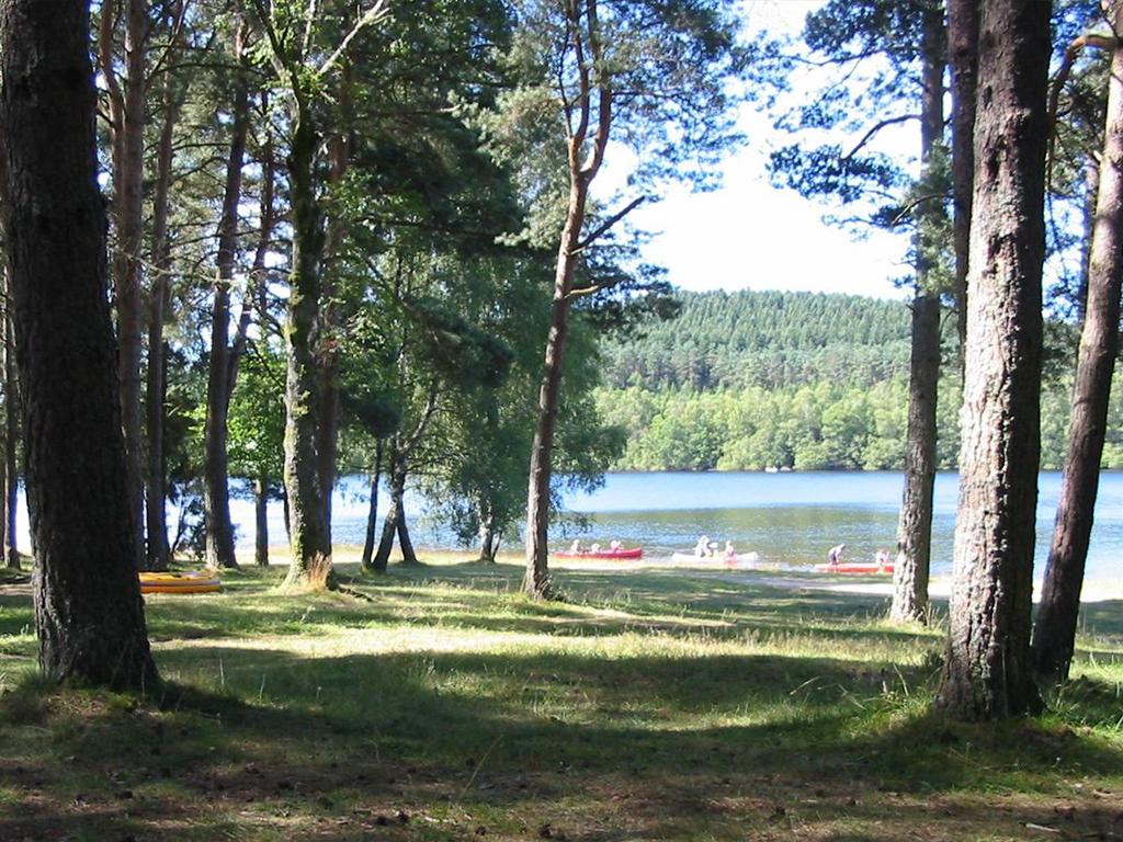 Photo Aire naturelle de camping Pelletanges- SAINT MARC A LOUBAUD