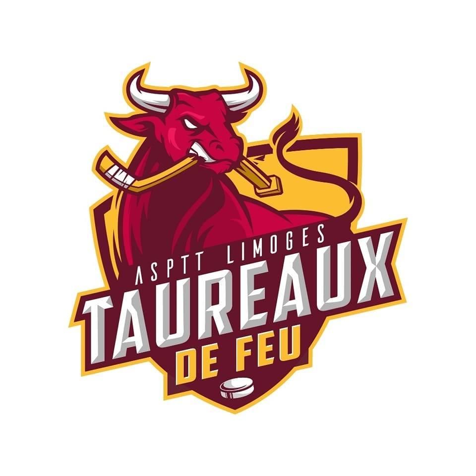 Limoges :  Match de hockey Limoges Les Taureaux de Feu - Vaujany