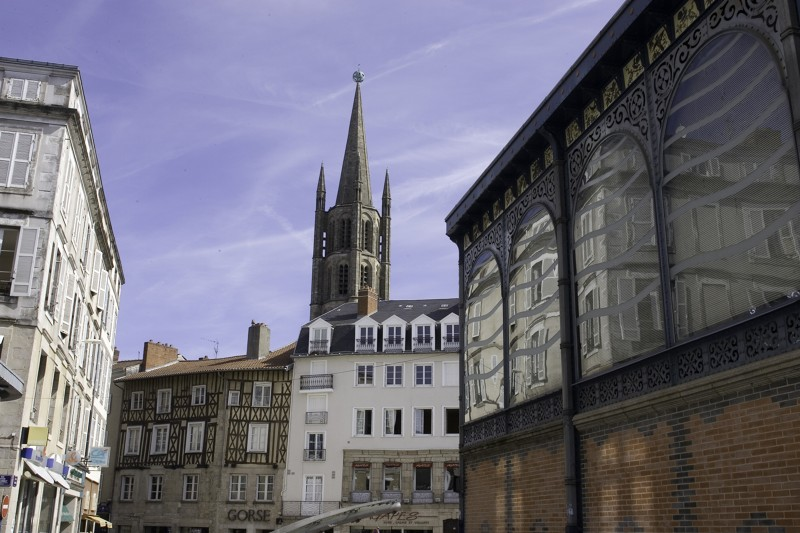 Limoges : Limoges in 90 minutes (guided tour in English)
