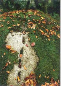 Limoges : Le fil de la pierre