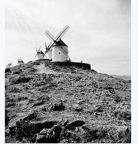 Limoges : Don Quichotte (J'étoilerai le vent qui passe)