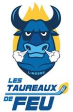 Limoges :  Match de hockey Limoges Les Taureaux de Feu - Nantes 2