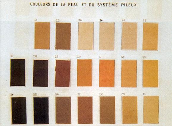 Limoges : Le partage de la couleur : entre biologique et social