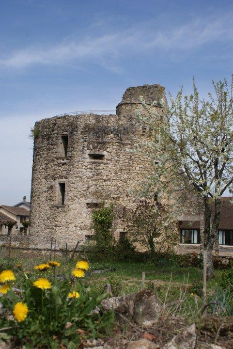 Château de Châlucet