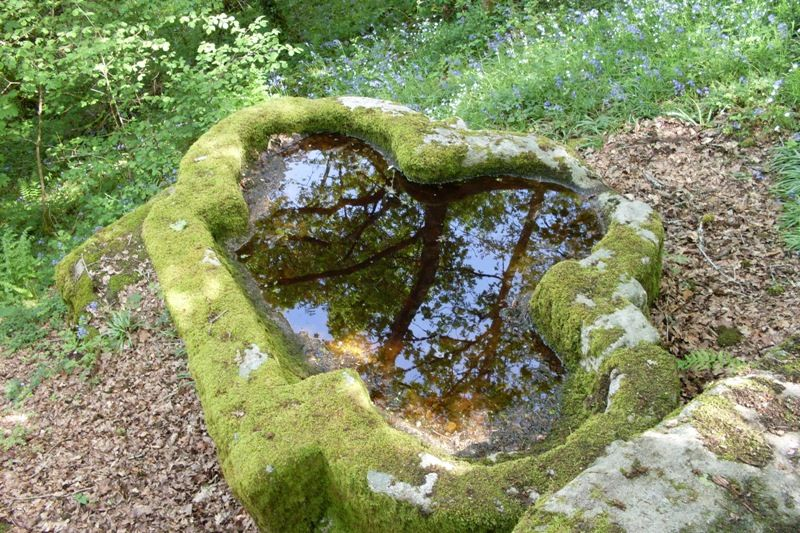 La cuve baptismale trilobée