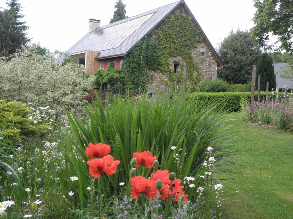 Photo Chambres d'hôtes au  Jardin - Jardin- SAINT FREJOUX