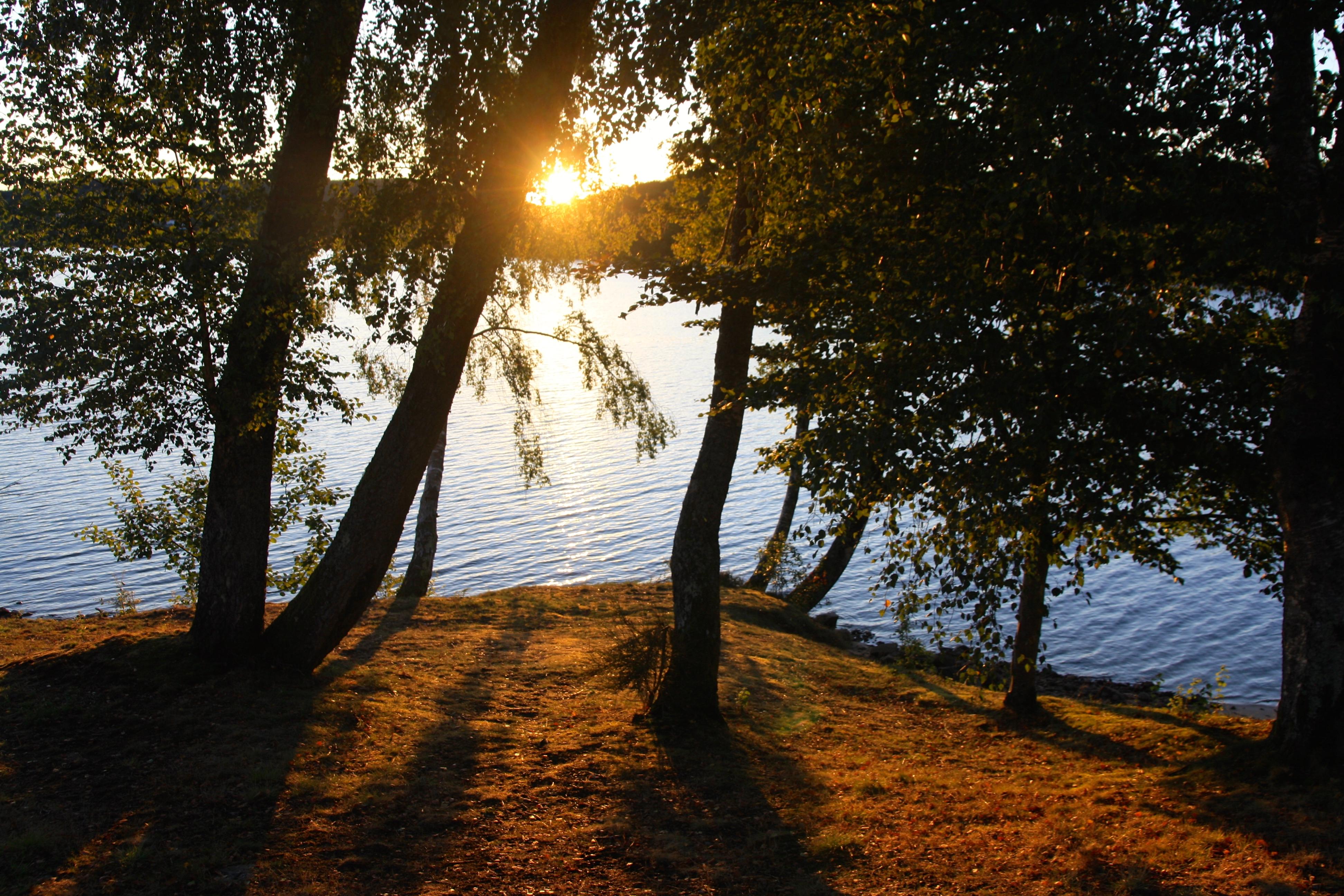 Séjour randonnée sur le plateau de Millevaches au bord du lac de Vassivière