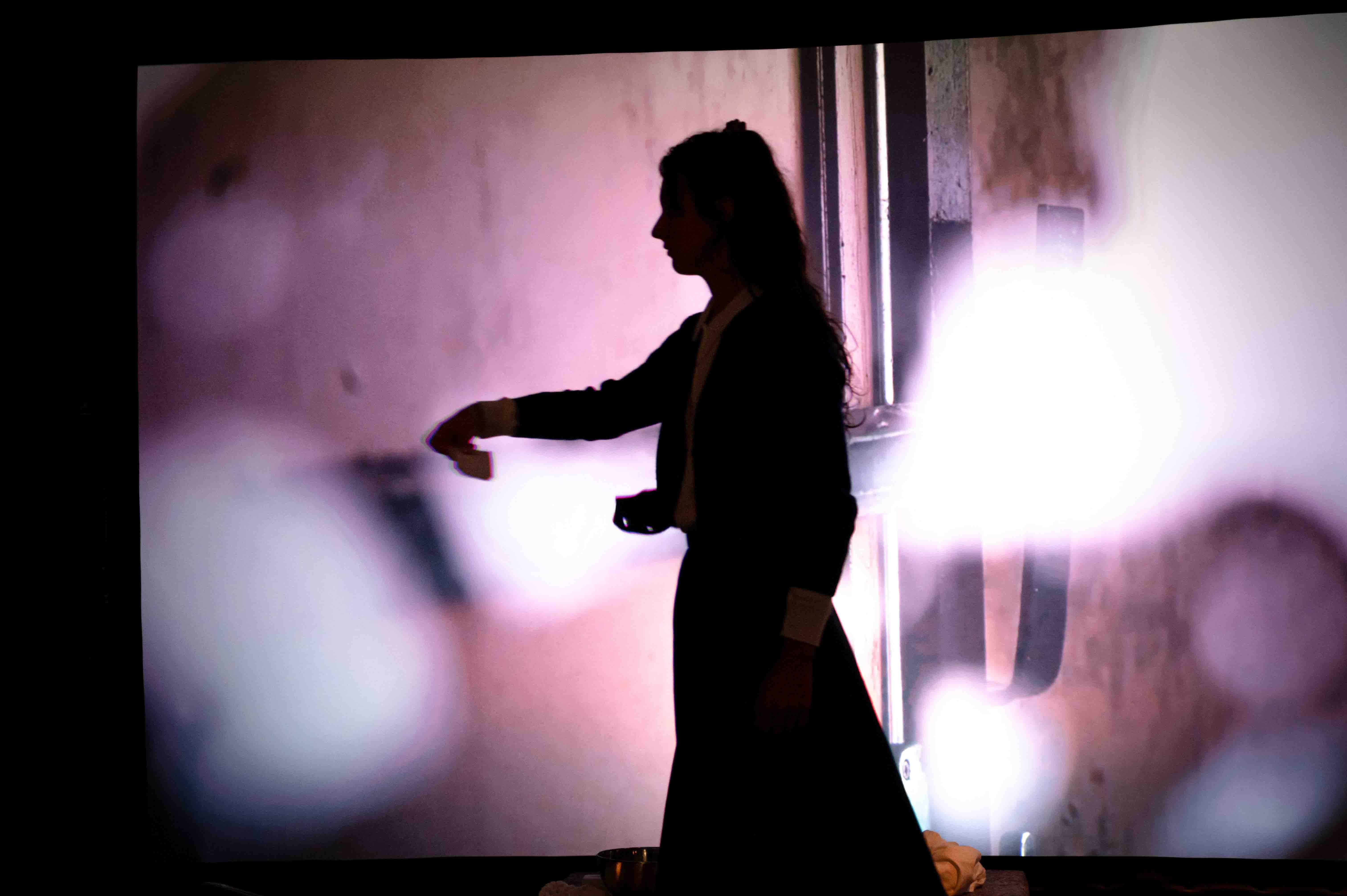 Limoges : Stage « Roman, musique et  cinéma au théâtre » autour de L'Ange Esmeralda
